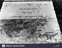 Photography Lafayette In by Memorial Stone To Pet Dog Owned By The Great Lafayette In