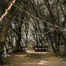best 25 wedding in the woods ideas on wedding in - Wedding In The