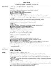resume objective for students exles of ode assistant clinical professor resume sles velvet jobs