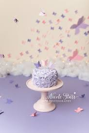 butterfly cake a butterfly cake smash with saratoga springs baby photographer
