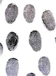 pattern physical evidence prints impressions and markings oh my forensic science degree