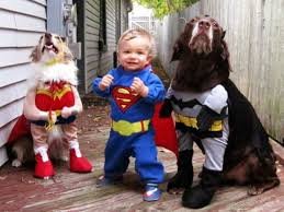 Toddler Superman Halloween Costume Kids Pets Matching Costumes Parent Society