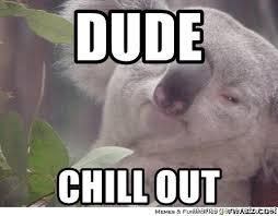 High Koala Meme - dude chill out high koala meme generator