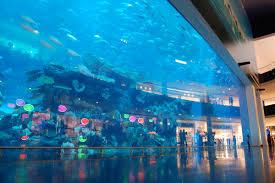 public aquarium wikipedia