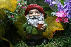 i m not a fan of gnomes but a gnome that s a