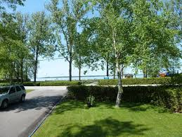 Cottages For Rent On Lake Simcoe by 1177 Lake Simcoe Cottage 3 Br Vacation Cottage For Rent In
