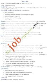 Consultant Resume Samples Artist Resumes Resume Cv Cover Letter