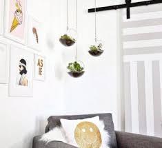 hanging faux terrarium living room decoration garden ideas