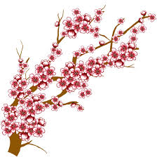 tree clipart japanese cherry blossom pencil and in color tree