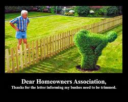 hilarious hoa stories is every hoa anti boat archive teamtalk