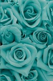 Tiffany Blue 28 Best Inspired By Tiffany Blue Images On Pinterest Tiffany