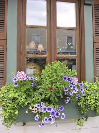 Hooks And Lattice by 32 Stunning Flower Box Ideas U0026 Arrangements