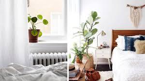 dans une chambre je veux des plantes dans ma chambre