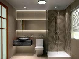 Basement Bathroom Designs Pretentious Basement Bathroom Design Designed Modernly
