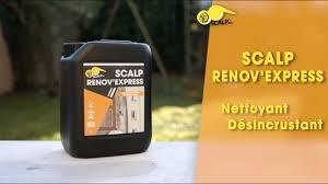 scalp renov u0027express fr youtube
