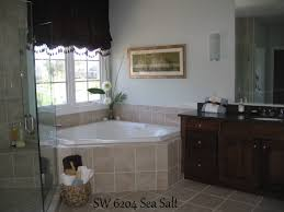 Sherwin Williams Sea Salt Bathroom Do I Have To Paint My Walls Gray If I Want To Sell My House Fast