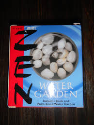 Zen Water Garden Day 33 The Mini Zen Water Garden Tina U0027s Quest To Give One Thing