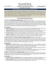 resume sample finance executive summary resume example msbiodiesel us resume sample finance executive executive resume example the top executive summary resume example