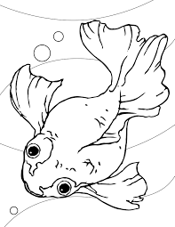 goldfish coloring page clipart for pages shimosoku biz