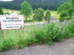 Bauplatz Bauplatz Archives Immobilien Im Hochschwarzwald