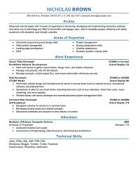 Professional Resume Online by Job Resume Web Developer Resume Samples Free Entry Level Web