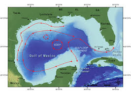 Ocean Currents Map Mom Continues To Ask About Red Tide U2013 Kraken U0026 Friends