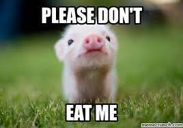 Eat Me Meme - dont eat me