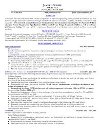Executive Summary Resume Examples by 10 Executive Resume Templates Free Samples Examples Formats