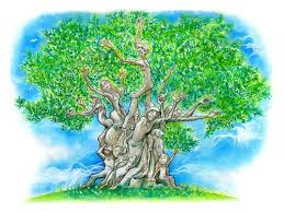 coloring olive page tree free coloring pages