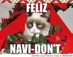 Grumpy Cat Memes Christmas - grumpy cat christmas meme 011 feliz navi dont comics and memes
