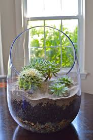 Terrarium Coffee Table by When I Grabbed The Side Tables At Ikea To Eventually Make These