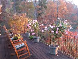 cottage deck with metal railing u0026 large potted plants in sunset