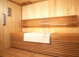 midi vision by tylo sauna heater product review