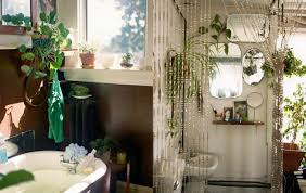 plant for home decoration plant indoor plants for bathroom bathroom plants uk aloe vera