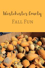 halloween city cortland ny westchester county archives ny foodie family