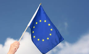 Flag Of The European Union Hand Waving Flag European Union Eu 12x18