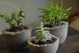 exteriors awesome large outdoor planters indoor planter ideas