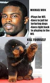 Mike Vick Memes - best 25 ideas about michael meme find what you ll love