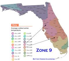 Garden Planting Zones - best 25 florida gardening ideas on pinterest florida