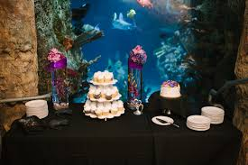 Zoo Lights Pt Defiance by Wedding At The Point Defiance Zoo And Aquarium Wedding Ideas