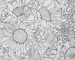 sunflowers coloring page printable digital download jan