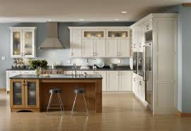 Kitchen Ideas With Stainless Steel Appliances by Kitchen Excellence Designs Interior Kitchen Modern White Shaker
