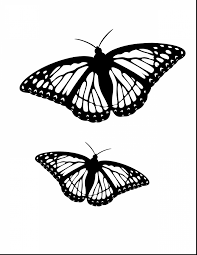 100 ideas monarch butterfly coloring pages on gerardduchemann com