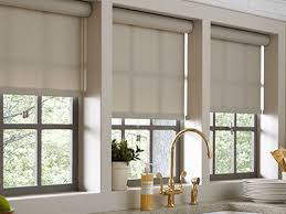 Where To Buy Roman Shades - window treatments at the home depot