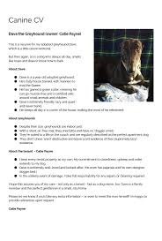 If A Dog Were Filling Out A Resume Renting Think You Can U0027t Adopt A Greyhound Think Again