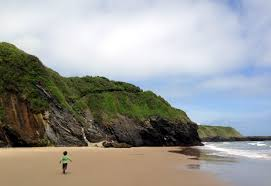 8 brilliant beaches within an hour of dublin independent ie