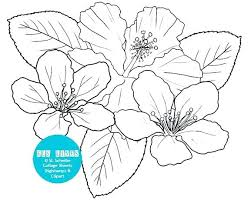 coloring pictures of hibiscus flowers hibiscus coloring pages hibiscus coloring page flowers hibiscus