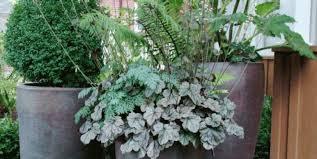 plant artificial plants stimulating artificial indoor
