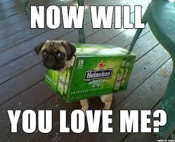 Sad Pug Meme - sad pug needs a hug meme guy