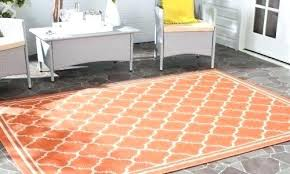 Outdoor Rug 4x6 New Outdoor Rugs Target Startupinpa